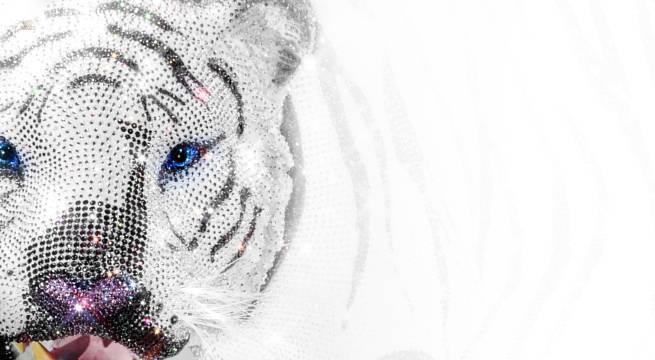 Hochexklusiver weißer Tiger in Lebensgröße komplett besetzt mit Swarovski Kristallen  Welt-Unikat