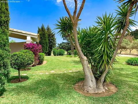 Wundervoller Garten