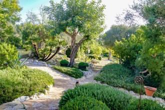 Schön angelegter Gartenbereich