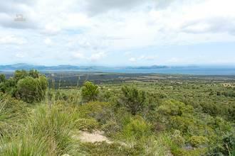 Fantastischer Panoramablick auf die Küste...