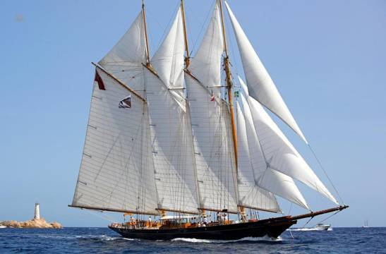 Townsend & Downey Classic SHENANDOAH OF SARK